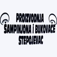 BUKOVAČA I ŠAMPINJONI STEPOJEVAC