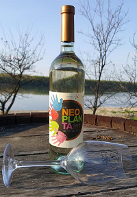 neoplanta_sijacki