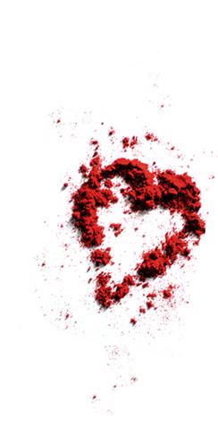 Delikates Spice & Pepper doo Martonoš Začinska paprika