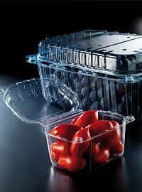 plasticne_posudice_sa_poklopcem_za_ceri_paradajz_i_borovnice