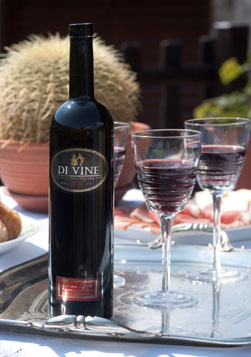 vrhunsko_crveno_vino_di_vine_proizvodjac_vinarija_rupice